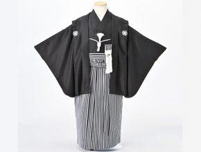 株式会社京都紋付 使われている場所