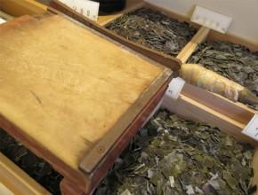 伝承の味 京昆布 製造プロセス2