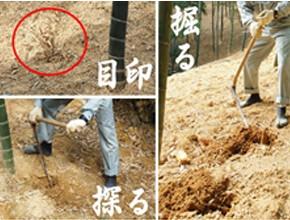 小川食品工業株式会社 製造プロセス3