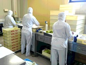 有限会社豊和食産(まざあぐうす) 製造プロセス2