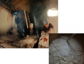 ハクレイ酒造株式会社 製造プロセス2