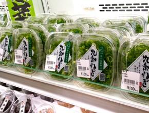農業生産法人 こと京都株式会社 使われている場所